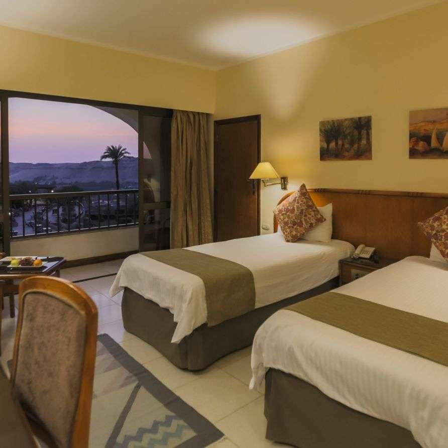 Standard Nile View Room